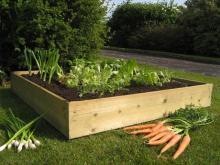 Принципы восстанавливающего земледелия