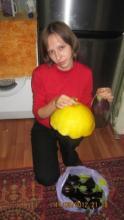 Мой опыт выращивания баклажанов