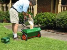 Как удобрять газон